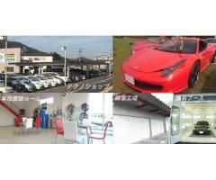 【正社員求人】善通寺のカーショップの店内業務、営業・企画、販売・接客・サービス